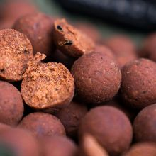 CCMoore Pacific Tuna Shelf Life Boilies 24 mm - 5 kg