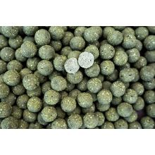 Pro Line The NG Squid Boilies - 5 kg - 20 mm